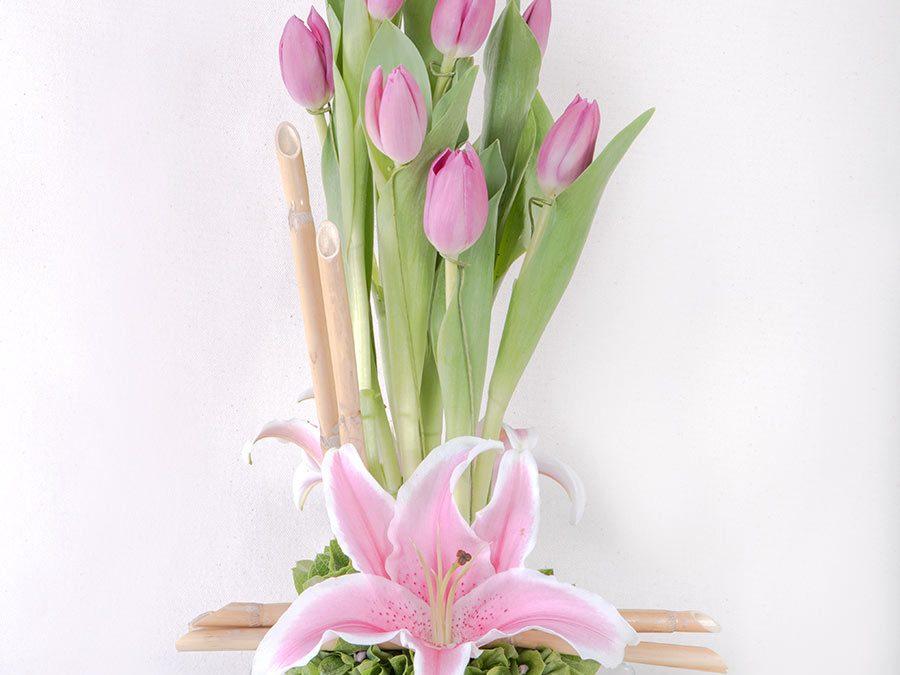 Minimalista de Tulipanes