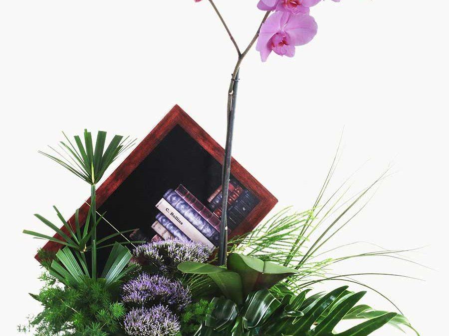 Orquídea Libros