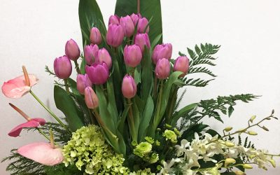 Nido de tulipanes y orquideas