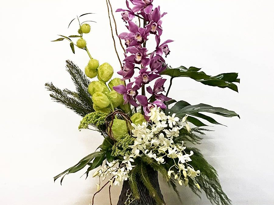 Armonía de orquídeas