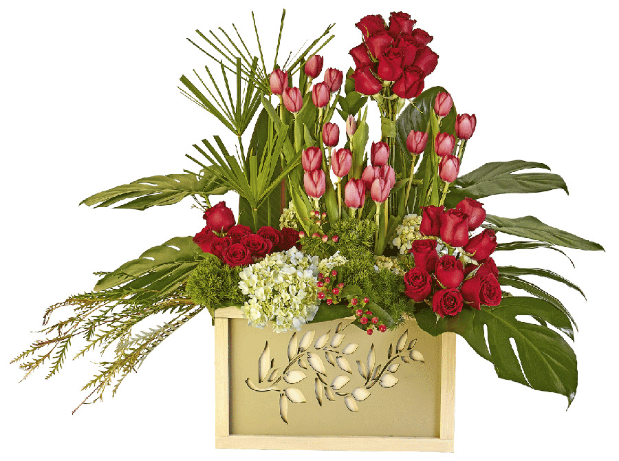 Rocío de Rosas y Tulipanes
